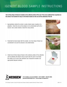 How To Collect Dna Samples By Beefmasters