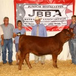 Champion Advancer Heifer – B Bar Scarlett exhibited by Seth Byers, Decatur, Texas
