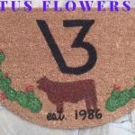 CACTUS FLOWER Ranch Mat